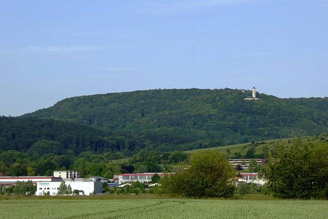 Wittenburg Castle Ruins